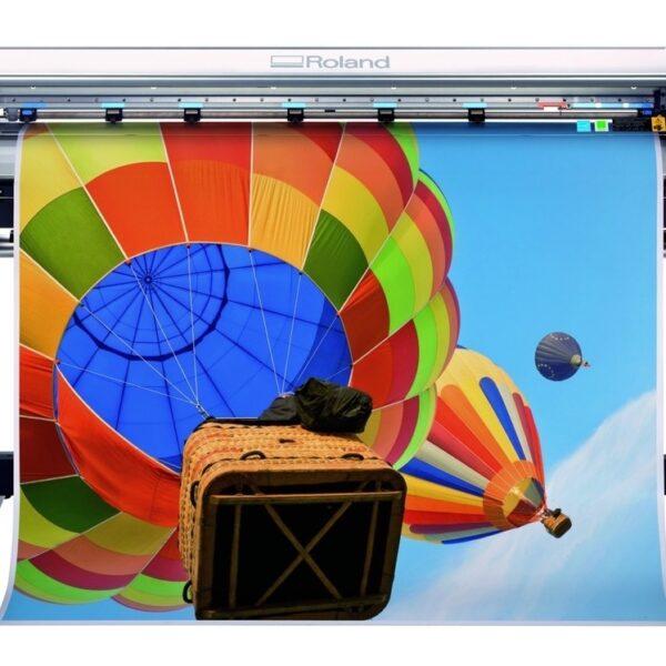 roland-air-ballon-4